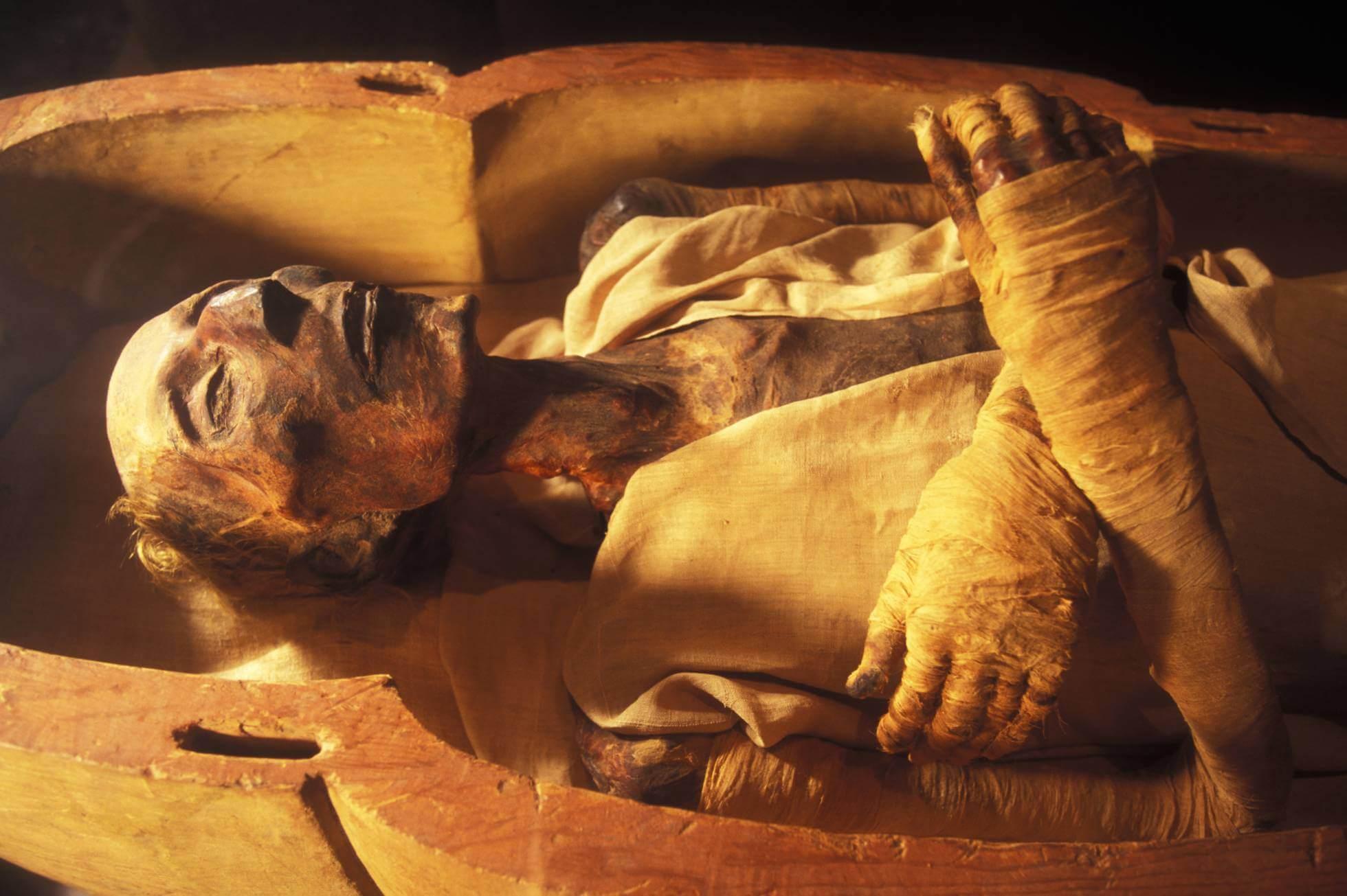 Momia del faraón Ramsés II en el Museo Egipcio de El Cairo.
